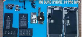 iPhone 11 Pro Max អាចកាន់ថ្មធំជាងមុនរហូតដល់ 25 ភាគរយ